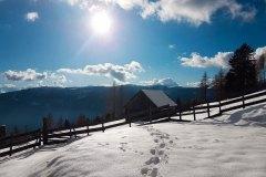 linder-winter